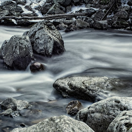 Go with the Flow by Sara Ascalon - Landscapes Waterscapes ( water, ken lockwood gorge, raritan river, gorge, flowing, long exposure, new jersey, relax, tranquil, relaxing, tranquility )