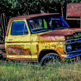 The Ford by Ashley Warren - Transportation Automobiles ( ford trucks, old trucks, ford, lonely, rustic, fields )