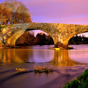 Kilsheelan Bridge by Joe Ormonde - Buildings & Architecture Bridges & Suspended Structures ( bridge river sky trees )
