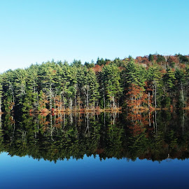 Mirrored at Union Meadows by Juls Twombley - Novices Only Landscapes