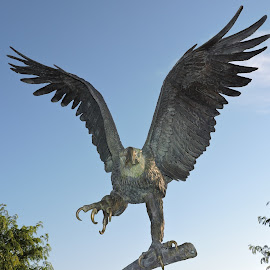 A Closer View by Linda McCormick - Artistic Objects Other Objects ( eagle, veterans, cemetary, tribute, van meter,  )
