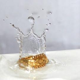 Wedding Ring by Ruby Prem - Wedding Bride