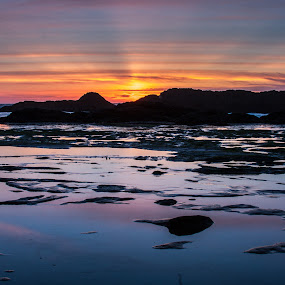 Seal Rock Oregon by Craig Pifer - Landscapes Sunsets & Sunrises ( seal rock, sunset, oregon coast, ocean, beach, landscape )