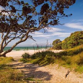 Walkway, Otama Beach. by Graeme Hunter - Landscapes Beaches
