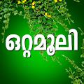 Ottamoolikal Malayalam APK for Bluestacks