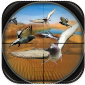 Game Desert Sniper Spy Pigeon Hunt apk for kindle fire