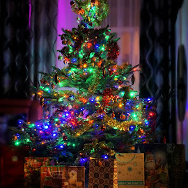 Magic of lights by Nicoleta Gradinaru - Public Holidays Christmas ( lights, magic, christmastree, presents )