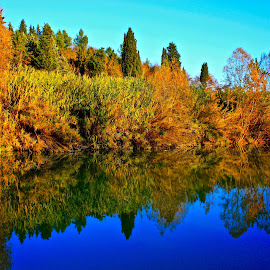 Autumn mirror in italy by Fabrizio Reali - Landscapes Waterscapes ( canon, nature, autumn leaves, autumn, autumn colors, photo )