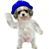 Talking Dog APK for iPhone