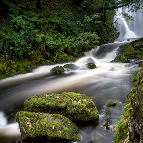 Snowdonia Falls by Kain Dear - Landscapes Waterscapes ( exposure, water, falls, trees, snowdonia, motion, long, woods )