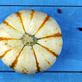 Yellow and white Pumpkins by Dipali S - Food & Drink Fruits & Vegetables ( seasonal, decorative, object, halloween, farm, gourd, real, nature, autumn, vegetarian, striped, orange, decoration, green, pumpkins, agriculture, white, photo, stripe, vegan, nutrition, market, food, background, healthy, harvest, vegetable, garden )