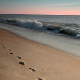 Footprints by Terri Schaffer - Landscapes Beaches