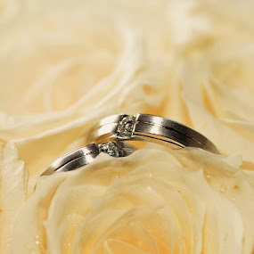 Ring by Stacy Benedicta - Wedding Details