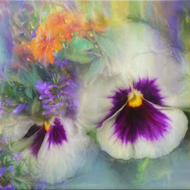 Pansy In September by Mill Tal - Digital Art Things