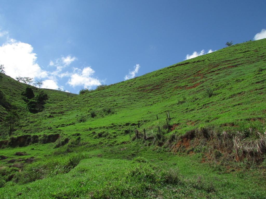 Fazenda / Sítio à venda em Secretário, Petrópolis - Foto 3