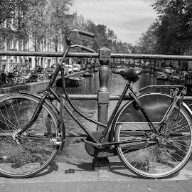 The bycicle by Matteo Caldaroni - City,  Street & Park  Street Scenes
