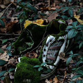 The lost shoe by Fodor Zoltan - Artistic Objects Clothing & Accessories