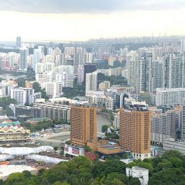 Living High by Bryan Lowcay - City,  Street & Park  Skylines