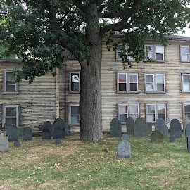 Old House by the Graveyard by Kristine Nicholas - Novices Only Landscapes ( old, houses, building, grass, graves, green, cemetary, grave, architecture, house, historic, iphone 6s photos, tree, nature, buildings, antique,  )