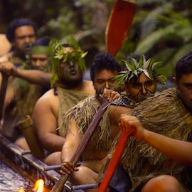 Maori Warriors  by Nancy Merolle - People Musicians & Entertainers ( rotarua, rowing, torchlight, warriors, men, maori warriors, nz, boat, maori )