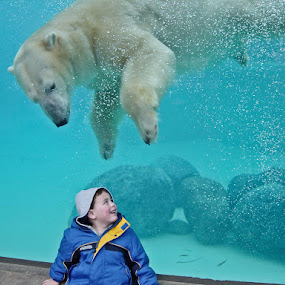 Boy and Bear by Neal Kulick - Babies & Children Children Candids