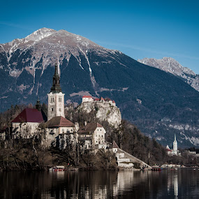 Bled church by Mario Horvat - Buildings & Architecture Places of Worship ( blue sky, winter, slovenia, bled, lake,  )