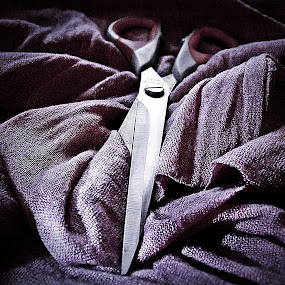 .....scissors by Vesna S. Disić - Products & Objects Technology Objects ( macro, detail, shadow, scissors, light, close up )