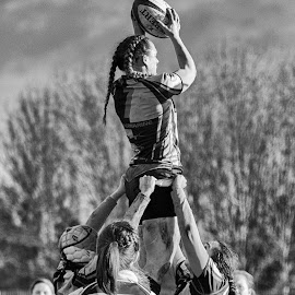 Winning the lineout by James Booth - Sports & Fitness Rugby ( union, sports, sport, team, rugby,  )