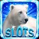 Polar Bear: Free Slots Casino