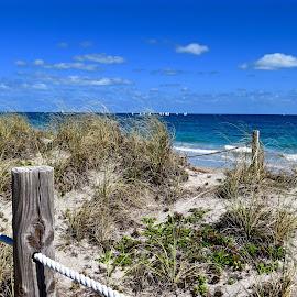 Aqua Waters of the Atlantic Beaches by Michael Villecco - Landscapes Beaches ( sand, beaches, florida, ocean, aqua )