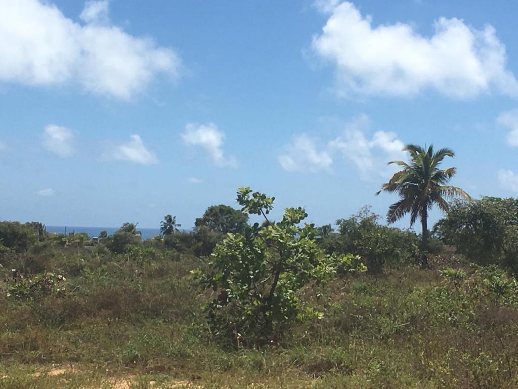 Imperdível!!! Terreno à venda, 300 m² por R$ 20.000 - Vista para o mar - 150 metros do binário