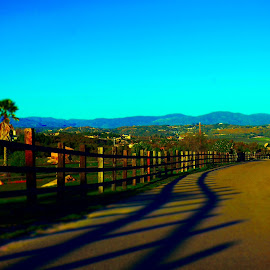 Shadow Swirvin by Brendan Mcmenamy - Novices Only Landscapes ( fence, mountain, ramona, shadow, swerve )