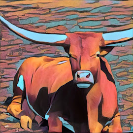Lazy Longhorn by Bruce Feldmeyer - Illustration Animals ( longhorn, bull )