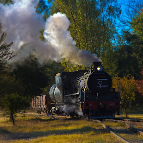 Steam train B by Trippie Visser - Transportation Trains ( sky, grass, trees, train, steam )