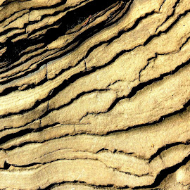 by Beth Bowman - Nature Up Close Rock & Stone