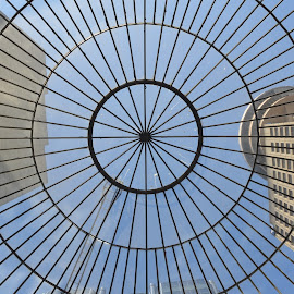 Through the dome by Cory Bohnenkamp - Buildings & Architecture Office Buildings & Hotels ( blue sky, buildings, grid, dome, architecture, domed, vancouver, city )