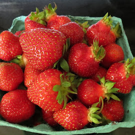 First of the Season by Rita Goebert - Food & Drink Fruits & Vegetables ( home grown; fruit; strawberries; quart; produce; gifts )