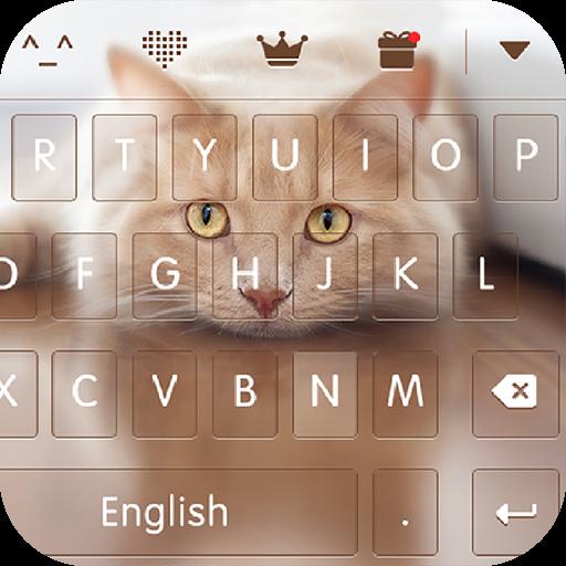 keyboard - Boto : Cute Kitty (app)