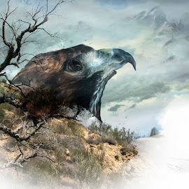 Free by Zsuzsanna Szugyi - Digital Art Abstract ( tree, raptor, hawk )