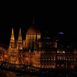 Budapest Parliamenr by Steve Cornforth - Buildings & Architecture Public & Historical