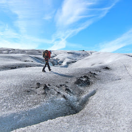 Hiker on Glacier  by Lily Zall - Landscapes Travel
