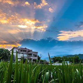 Sunlight by Jay Chen - Landscapes Sunsets & Sunrises