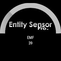 Screenshot of Entity Sensor Pro-EMF Detector