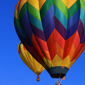 Moving Rainbow by Jen Millard - Transportation Other ( flying, sky, colorful, hot, air, balloons )