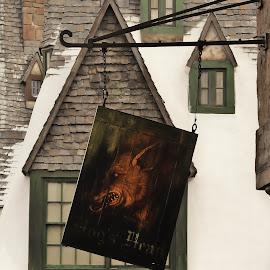 Hogs Head by Kathryn McConnell - City,  Street & Park  Amusement Parks ( sign, winter, florida, theme park, universal studios, orlando, tourism, harry potter )