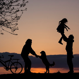 Playground in the sunset by Ruxandra Antal - People Street & Candids ( playing, joy, silhouette, sunset, children, dog, people, light, sun, bicycle,  )