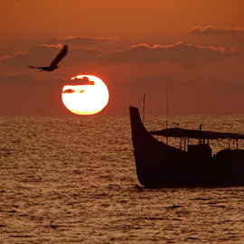 Lord, your Ocean is so vast and I am so small...... by Aroon  Kalandy - Transportation Boats ( orange, sony, fly, seascape, eve, sunset, bird, skyscape, sea, boat )