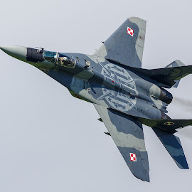 Mig-29 fly-by by Bojan Porenta - Transportation Airplanes ( fulcrum, 2016, mig, mikoyan-gurevich, fast, austria, zeltweg, fly-by, 29, airpower, airshow )