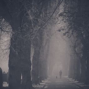 Solitude by Bryn Graves - People Fine Art ( winter, gothic, snow, cemetery, trees, dog )