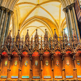 Misericords at Salisbury Cathedral by Zoot The-Tog - Buildings & Architecture Places of Worship ( misericord, church, seat, holy, cathedral )